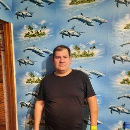 Дима, 49 лет, Ульяновск