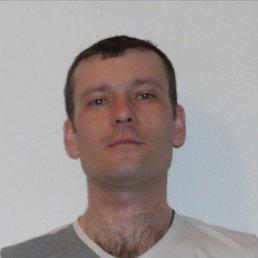 Сергей, 37 лет, Тюмень