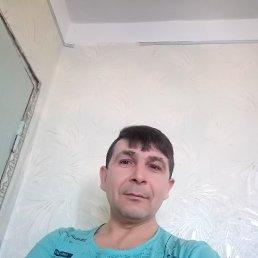 Дмитрий, 41 год, Тирасполь