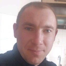 Олександр, 31 год, Житомир