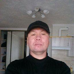 Алек, 42 года, Тюмень