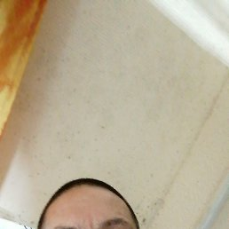 Максим, 41 год, Рошаль
