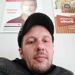 Саша, 34 года, Красноярск