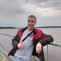 Палыч, 36 лет, Мытищи