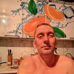 Александр, 41 год, Барнаул