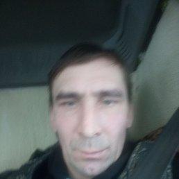 Вадим, 45 лет, Омск