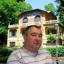 шамиль, 53 года, Казань