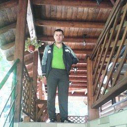 Александр, 36 лет, Магнитогорск