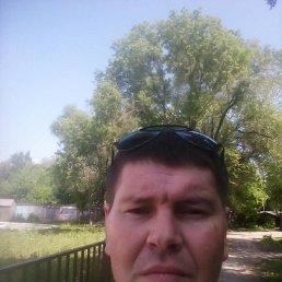 Денис, 41 год, Ульяновск
