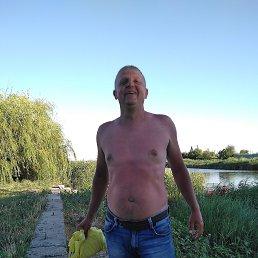 Вася, 43 года, Ростов-на-Дону