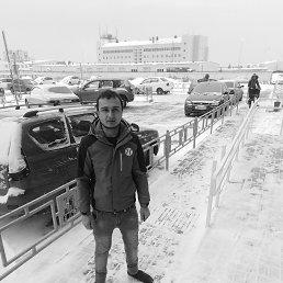 Толик, 28 лет, Барнаул