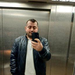 Бабелян, 28 лет, Вологда
