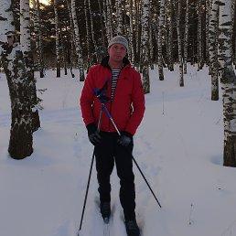 Андрей, 50 лет, Подольск