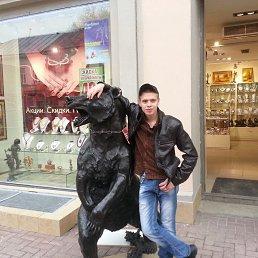 Максим, 28 лет, Брянск