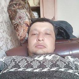 umid, 29 лет, Тында