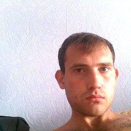 Александр, 38 лет, Тамбов