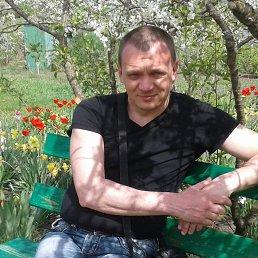 Александр, 40 лет, Житомир