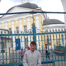 Аркадий, 29 лет, Черноголовка