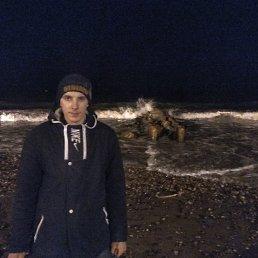 Александр, 29 лет, Калининград