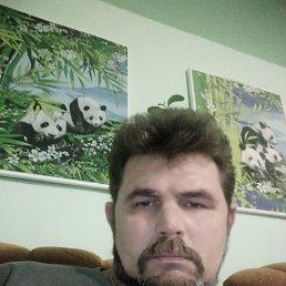 Владимир, 48 лет, Омск