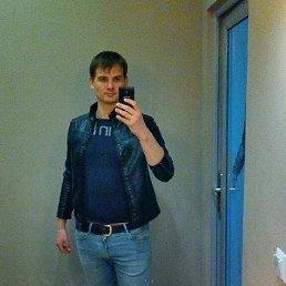 Андрей, 33 года, Тула
