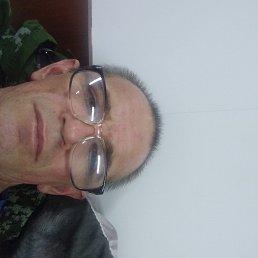 Владимир, 41 год, Краснодар