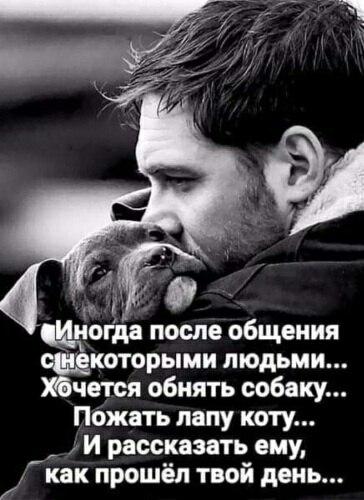 ....Я большего счастья в детстве не знал... Когда я плакал, а пёс лицо мне лизал