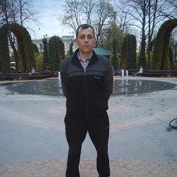 Фото Игорь, Брянск, 43 года - добавлено 12 июня 2021