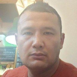 Шухрат, 38 лет, Химки