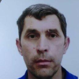 Навруз, 41 год, Электрогорск