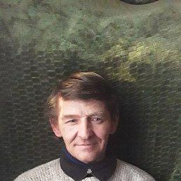 Николай, 51 год, Ростов-на-Дону
