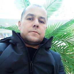Ахмед, 37 лет, Кострома