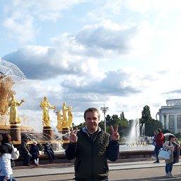 Александр, 37 лет, Видное