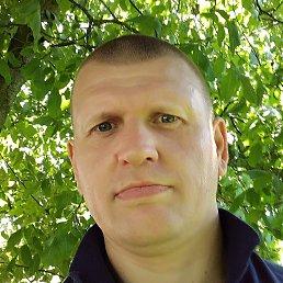 ART, 34 года, Дмитров