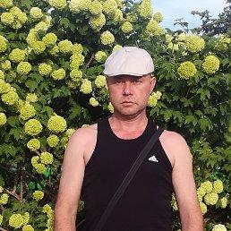 Максим, 41 год, Нижний Новгород