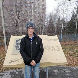 Сергей, 36 лет, Бийск