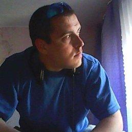 Максим, 34 года, Ярославль