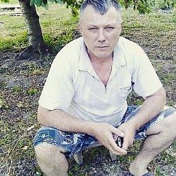 Андрей, Новороссийск, 59 лет