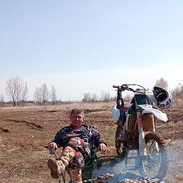 Александр, 49 лет, Белгород