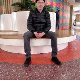 Алексей, 37 лет, Канаш