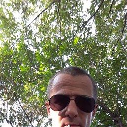 Дмитрий, 38 лет, Ставрополь