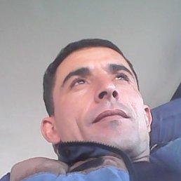 Рома, Саратов, 36 лет