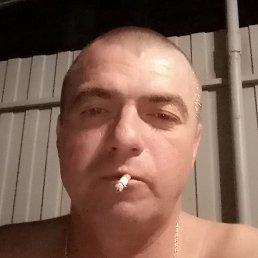 Алексей, Курск, 39 лет