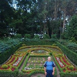 Александр, 57 лет, Азов