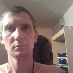 Дима, 37 лет, Пенза