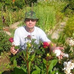 Сергей, 42 года, Чусовой