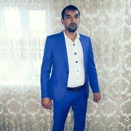 Коля, 29 лет, Москва