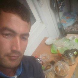 Дима, 32 года, Свободный