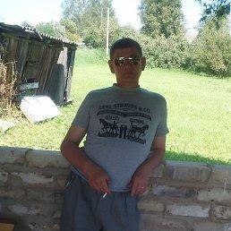 Владимир, 55 лет, Свободный