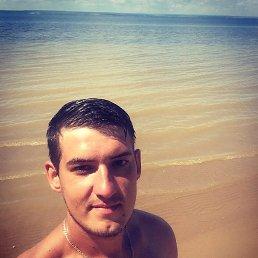 Дима, 26 лет, Тольятти
